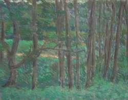 Erlen, 70 x 53 cm