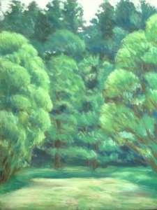 Weiden II 66 x 50,5 cm