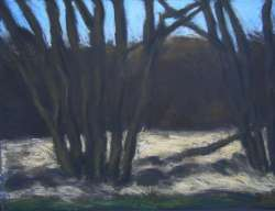Weiden im Winter II, 65 x 50 cm