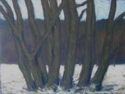 Weiden im Winter III, 65 x 49 cm